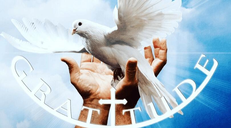DE235 World Gratitude Day